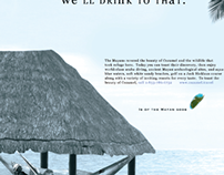 Cozumel, Mexico - Client/Designer Blind Ad Recreation