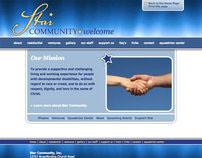 Websites, 2008 - 2010