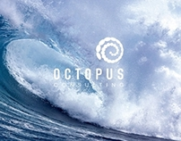 OCTOPUS Consulting Brand Identity
