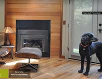 eco6design website design and development