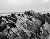 SEASIDE | Photography
