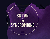 Flyers / for SNWTN - Sonotown 2013