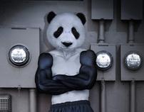 Urban Panda