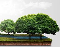 Dia do Meio Ambiente - Newsletter