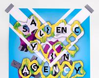 Saliency in Agency
