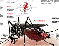 Gráfico Interactivo del dengue en morelos