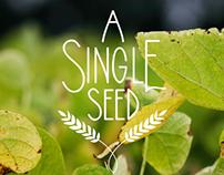A Single Seed