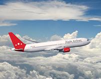 Álade Airlines (I)