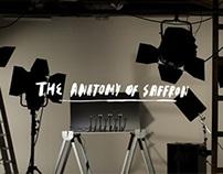 The Anatomy of Saffron