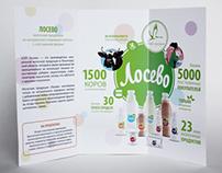 """""""Losevo"""" booklet"""