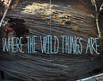 Where The Wild Things Are - film promotion