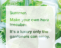 Make your own herb ice cubes.