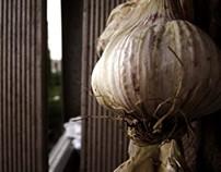 Garlic..