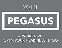 Pegasus Website