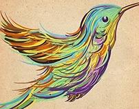 Video Process - Bird Illustration + Tattoo design.