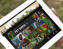 iBirds - iPad App Concept