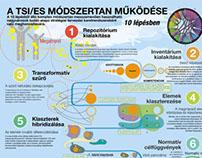 TSI/ES 10 steps - infographic
