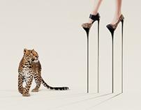 Amari Shoes Ad Campain
