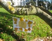 Improving Parks - Berkeley Innovation & Frog Design