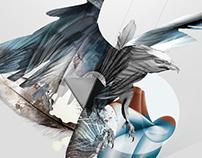 Origis Poster 2013
