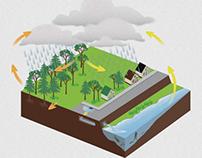 Nature Center Illustration Set