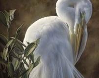 Wildlife Paintings - Watercolor