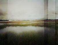 Landscapes I