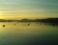 Calve Island