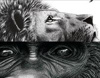 Animals : Graphiste on paper