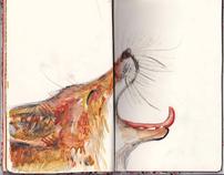 Fox doodles