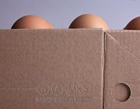 "egg box ""toaster"""