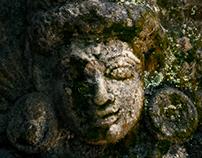 Walls of Thirunadhapuram temple