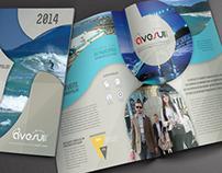 Flyer Design // Bi fold - AveSui 2014