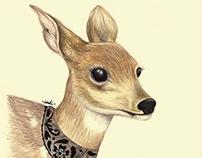 Prismacolor Animals