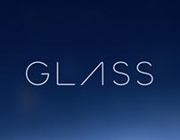 Hippflow for Google Glass