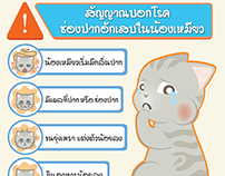 Unused Infographic works for Thonglor pet hospital.
