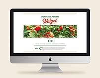 Valgrì New Website 2015