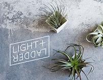 Light + Ladder