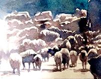 Herd is never heard