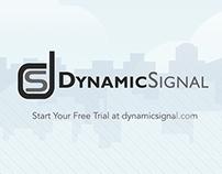 Dynamic Signal - Voice Storm