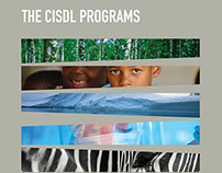 Annual Report Design — CISDL — Section Titles
