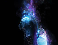 Kazak - Space Hound