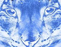 Cougar Chornicle Advertising Team Logo