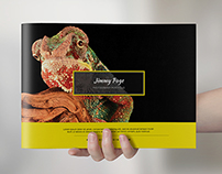 Modern Portfolio Brochure / Catalog
