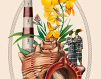 ANTROPOAMORFICO: Lighthouse family