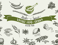 Hand drawn vector collection of herbs and spices
