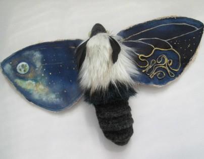Night Butterfly II