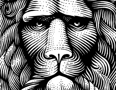 various scratchboard illustrations