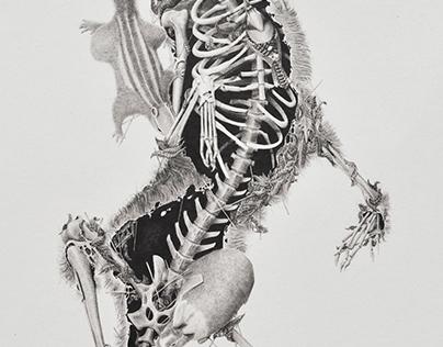 Cadáveres Habitables (serie) -