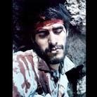 majid bagheri's Profile Image